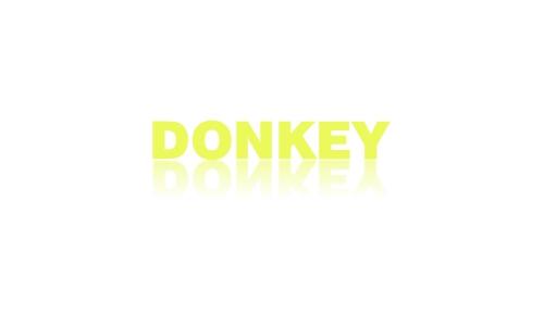 Donkey Forklift Logo